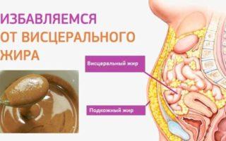 Висцеральный жир: чем опасен как от него избавиться